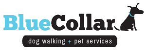Elkton Maryland Pet Sitter